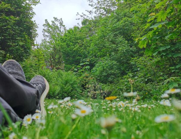 """Im Garten des """"Vor lauter Bäumen"""""""